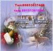 Дед Мороз и Снегурочка у Вас дома-Шатура