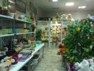 Цветочный дворик-Шатура