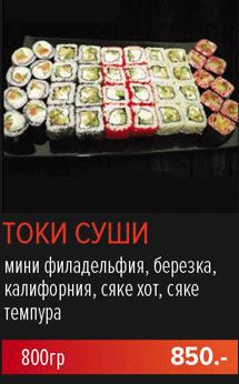 Токи суши